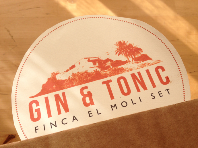 Regalo amigo invisible - Kit DIY para hacer Gin Tonics